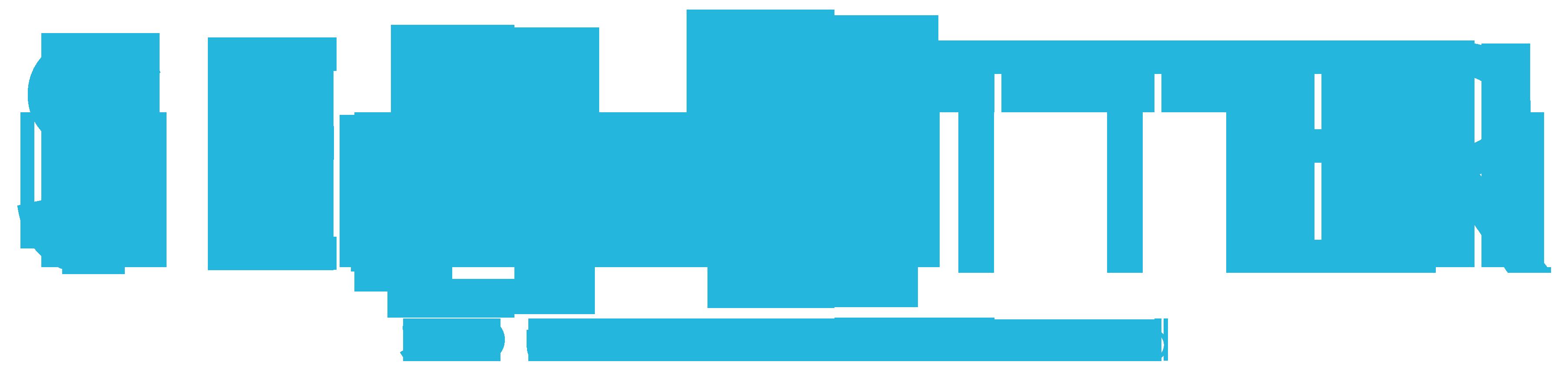 SEO-Otter: SEO & CRO Hand in Hand